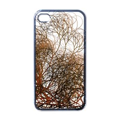 Digitally Painted Colourful Winter Branches Illustration Apple iPhone 4 Case (Black)