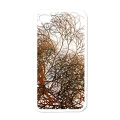 Digitally Painted Colourful Winter Branches Illustration Apple iPhone 4 Case (White)