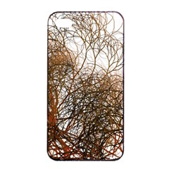 Digitally Painted Colourful Winter Branches Illustration Apple iPhone 4/4s Seamless Case (Black)