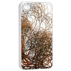 Digitally Painted Colourful Winter Branches Illustration Apple iPhone 4/4s Seamless Case (White)