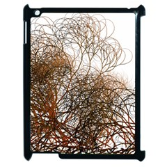 Digitally Painted Colourful Winter Branches Illustration Apple iPad 2 Case (Black)