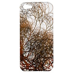 Digitally Painted Colourful Winter Branches Illustration Apple Iphone 5 Hardshell Case