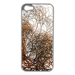 Digitally Painted Colourful Winter Branches Illustration Apple Iphone 5 Case (silver)