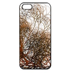 Digitally Painted Colourful Winter Branches Illustration Apple Iphone 5 Seamless Case (black)