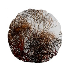 Digitally Painted Colourful Winter Branches Illustration Standard 15  Premium Round Cushions