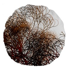 Digitally Painted Colourful Winter Branches Illustration Large 18  Premium Round Cushions