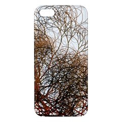 Digitally Painted Colourful Winter Branches Illustration Apple Iphone 5 Premium Hardshell Case