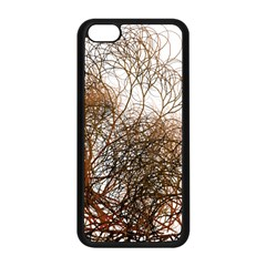 Digitally Painted Colourful Winter Branches Illustration Apple Iphone 5c Seamless Case (black)