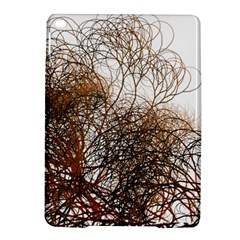 Digitally Painted Colourful Winter Branches Illustration Ipad Air 2 Hardshell Cases