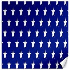 Starry Header Canvas 20  X 20