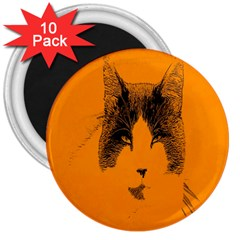 Cat Graphic Art 3  Magnets (10 pack)