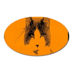 Cat Graphic Art Oval Magnet