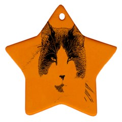 Cat Graphic Art Star Ornament (two Sides)