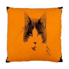 Cat Graphic Art Standard Cushion Case (two Sides)