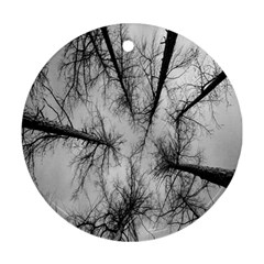 Trees Without Leaves Ornament (Round)