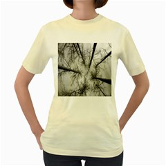 Trees Without Leaves Women s Yellow T Shirt