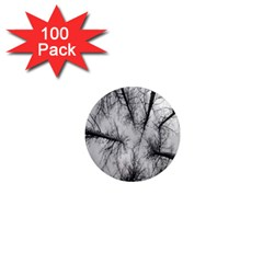 Trees Without Leaves 1  Mini Magnets (100 pack)
