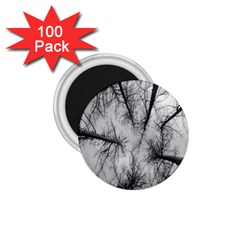 Trees Without Leaves 1 75  Magnets (100 Pack)