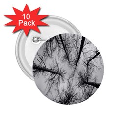 Trees Without Leaves 2 25  Buttons (10 Pack)