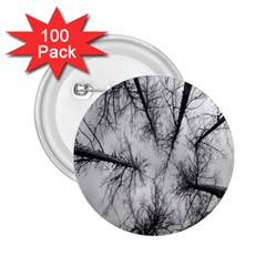 Trees Without Leaves 2 25  Buttons (100 Pack)