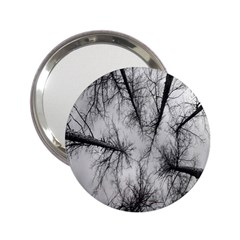 Trees Without Leaves 2 25  Handbag Mirrors