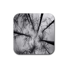 Trees Without Leaves Rubber Square Coaster (4 pack)