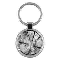 Trees Without Leaves Key Chains (round)