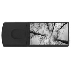 Trees Without Leaves USB Flash Drive Rectangular (1 GB)