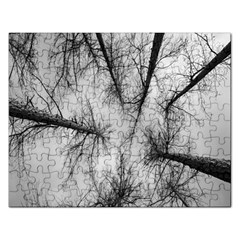 Trees Without Leaves Rectangular Jigsaw Puzzl