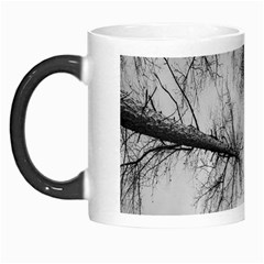 Trees Without Leaves Morph Mugs