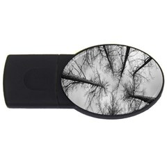 Trees Without Leaves Usb Flash Drive Oval (4 Gb)