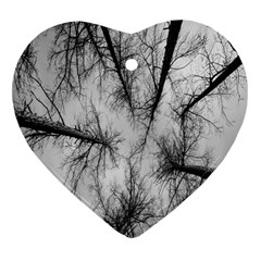 Trees Without Leaves Heart Ornament (two Sides)