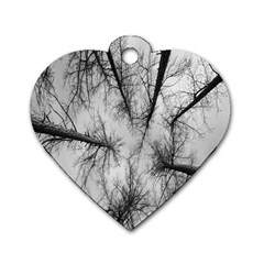 Trees Without Leaves Dog Tag Heart (one Side)