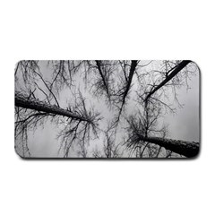 Trees Without Leaves Medium Bar Mats