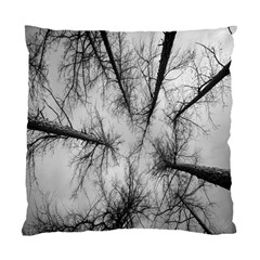 Trees Without Leaves Standard Cushion Case (One Side)