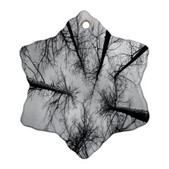Trees Without Leaves Snowflake Ornament (two Sides)
