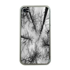 Trees Without Leaves Apple iPhone 4 Case (Clear)