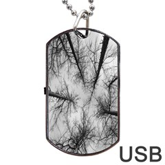 Trees Without Leaves Dog Tag Usb Flash (two Sides)