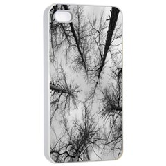 Trees Without Leaves Apple iPhone 4/4s Seamless Case (White)