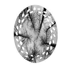 Trees Without Leaves Ornament (Oval Filigree)