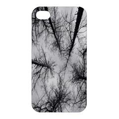 Trees Without Leaves Apple Iphone 4/4s Premium Hardshell Case