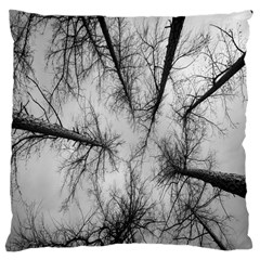 Trees Without Leaves Large Cushion Case (one Side)