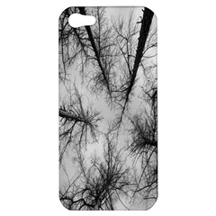 Trees Without Leaves Apple iPhone 5 Hardshell Case