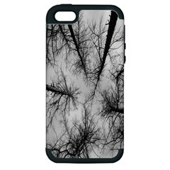 Trees Without Leaves Apple Iphone 5 Hardshell Case (pc+silicone)