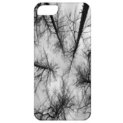 Trees Without Leaves Apple Iphone 5 Classic Hardshell Case