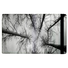 Trees Without Leaves Apple iPad 3/4 Flip Case