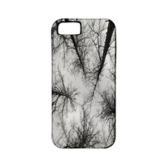 Trees Without Leaves Apple iPhone 5 Classic Hardshell Case (PC+Silicone)