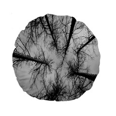 Trees Without Leaves Standard 15  Premium Round Cushions