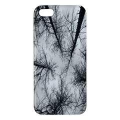 Trees Without Leaves Apple iPhone 5 Premium Hardshell Case