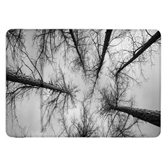 Trees Without Leaves Samsung Galaxy Tab 8.9  P7300 Flip Case